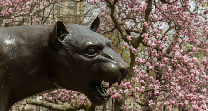 Panther in Spring with Budding Flowers