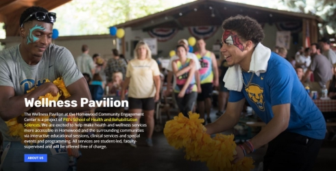 Thumbnail of SHRS Wellness Pavilion website