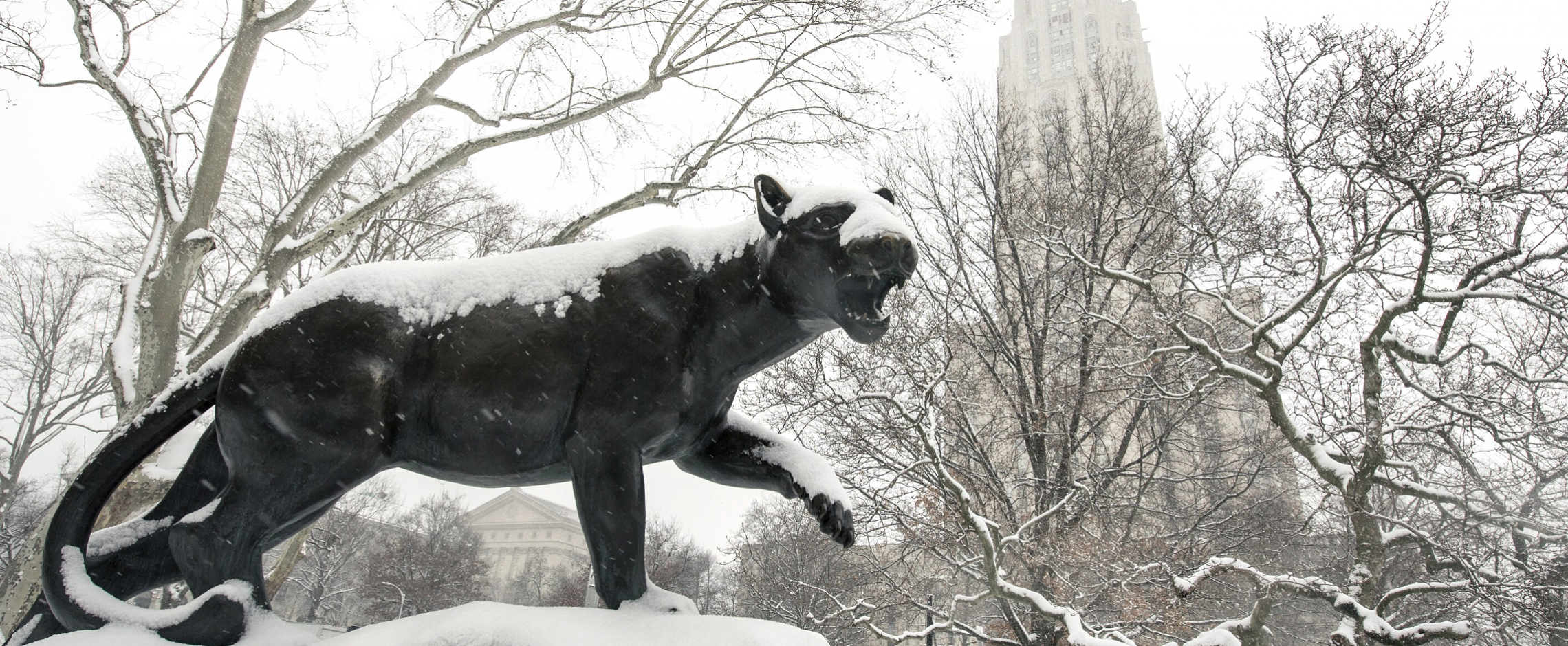 Panther Statue in Snow