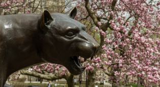Panther Statue with Spring Flowers behind it